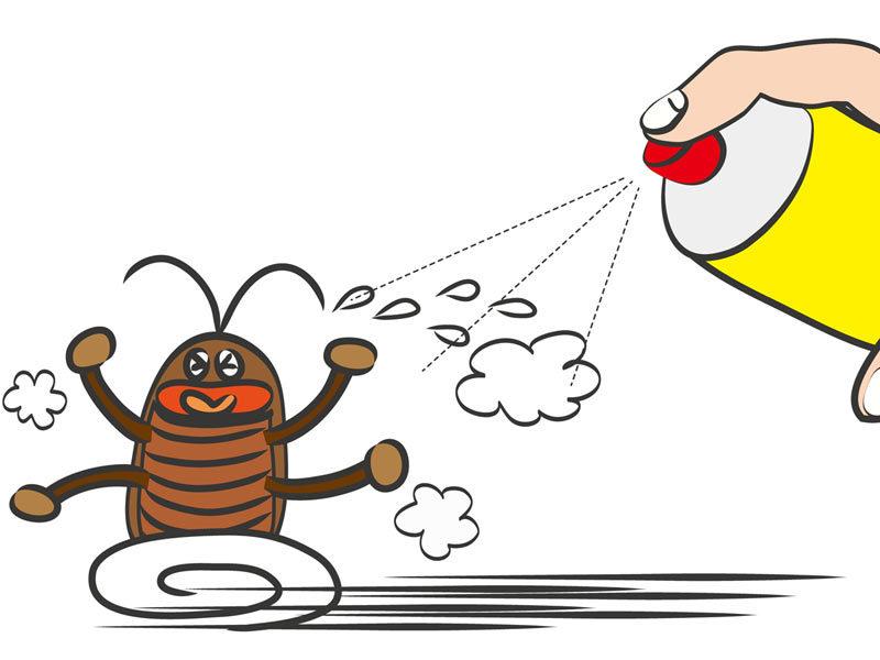 ゴキブリは1匹見つけたら100匹いるは本当かエアコンの室外機から